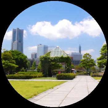横浜国立大学勉強法